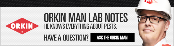 Orkin Man Lab Notes